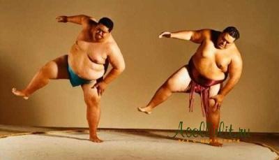 фото борцов сумо с целлюлитом