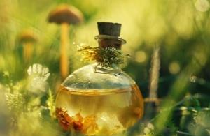 Состав касторового масла